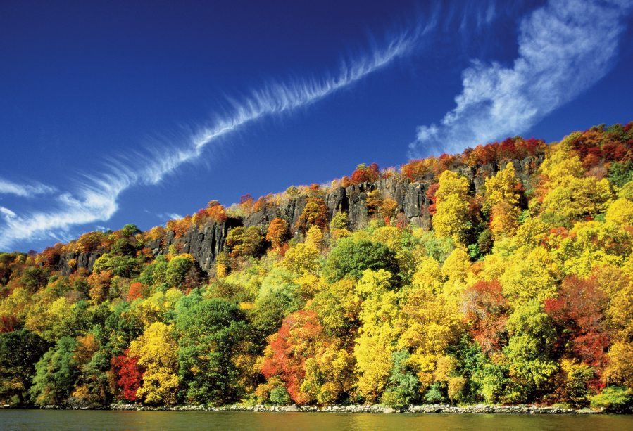 Bright colored leaves on trees under a steep cliff. Blue skies with vivid clouds.