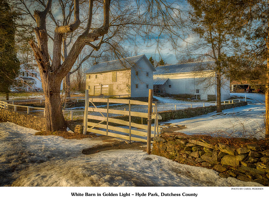 White barn in golden light. Wooden gate in the center.